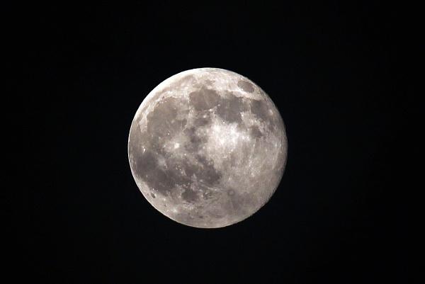 Full Moon by robertclarke