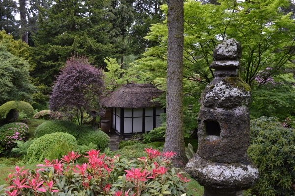 The Japanese Garden by Danny1970