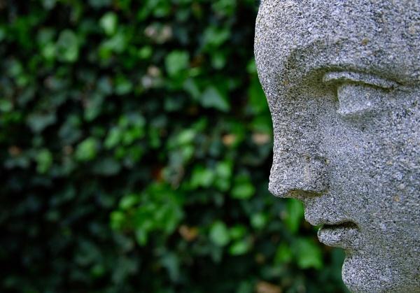 stone gaze