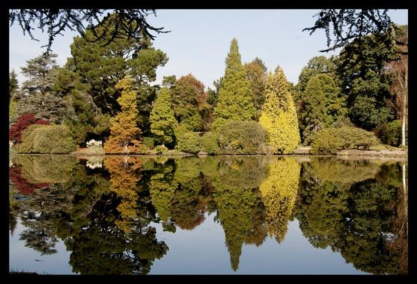 Reflections by Patwen