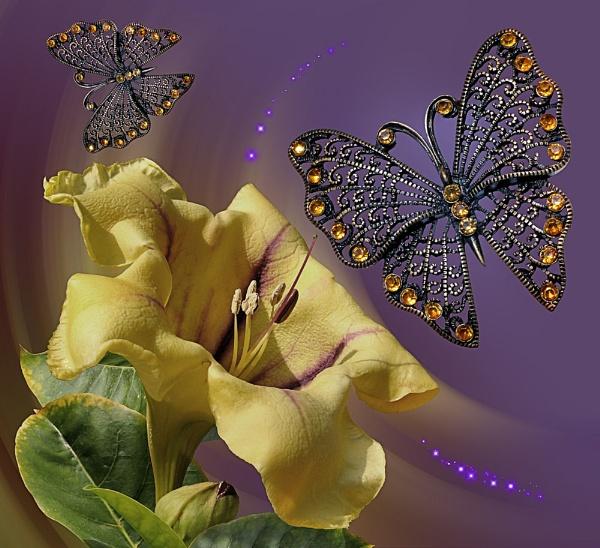 Butterfly Fantasy 4 by pamelajean