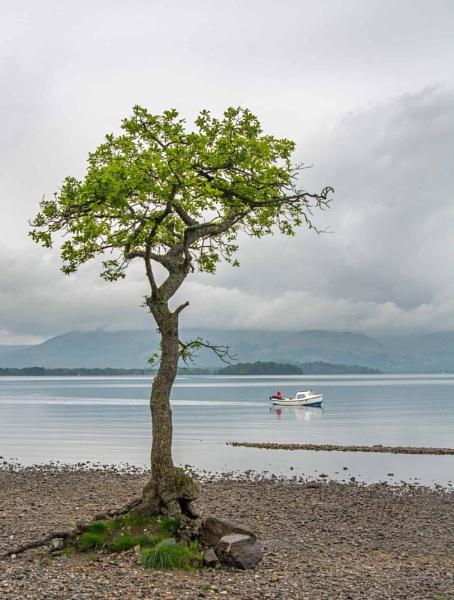 Millarochy Bay - Loch Lomond by Andysnapper