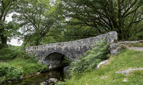 Huckworthy Bridge by topsyrm