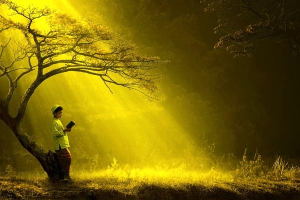 Dalam Naungan Cahaya by ipoenkgraphic