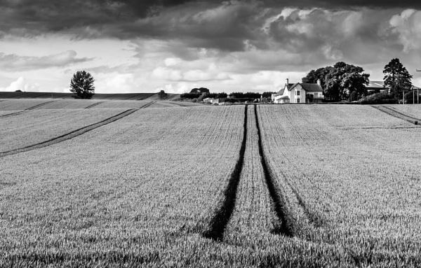 Farm at Fowlis by Osool