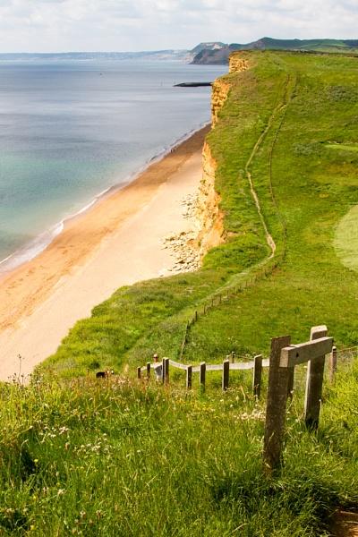 Coastal Path by Scooby10
