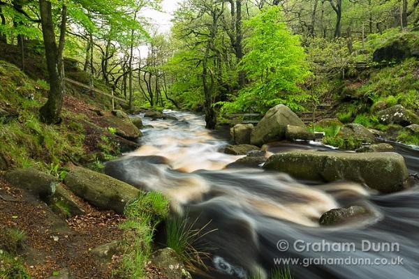 Padley Gorge - Peak District by grahamdunn