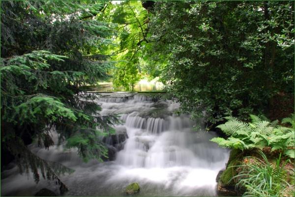 Carshalton Park by stephens55