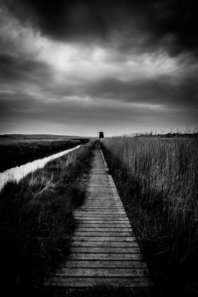 marsh walkway by leicanikonthing