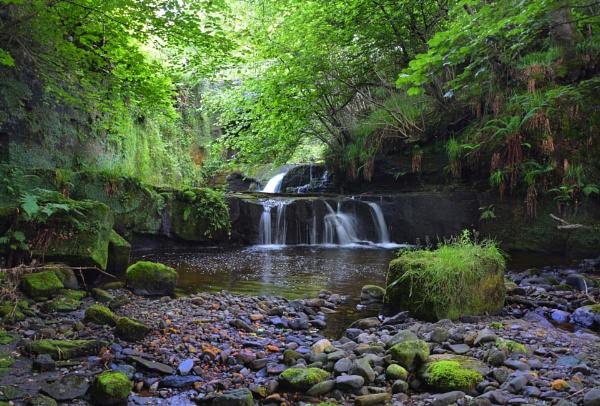 Garell Glen,Kilsyth,Scotland by wulsy