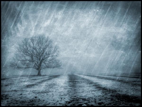 Wind, Sleet \'n snow !. by Niknut