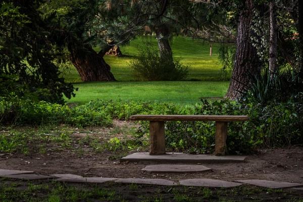 bench by ssnidey