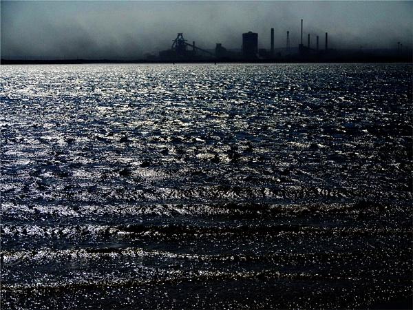 estuary by whatriveristhis