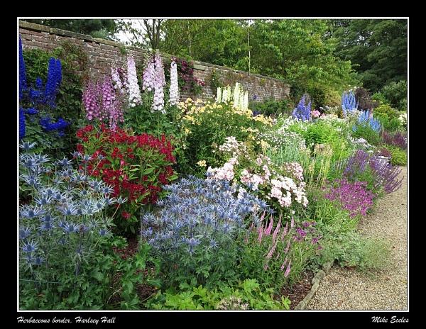 Herbaceous border, Harlsey Hall by oldgreyheron
