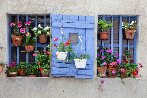 Window in Provence by ESGray