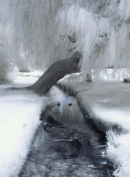 Alexandra Park by bugdozer