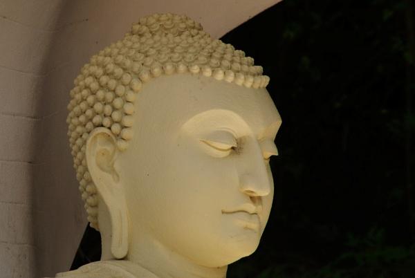 Buddha for Patty (1) by Chinga