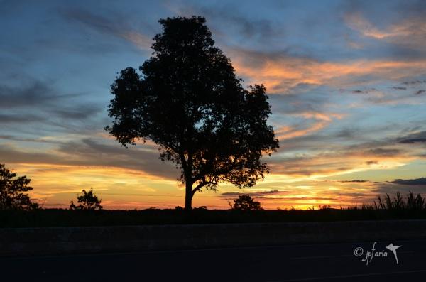 Sunset by Zerstorer