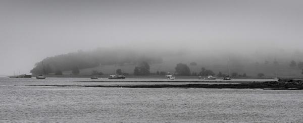 Misty by DavidMosey