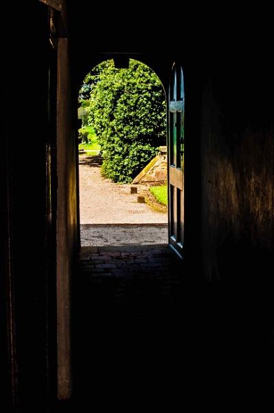 Distant garden by DavidMosey