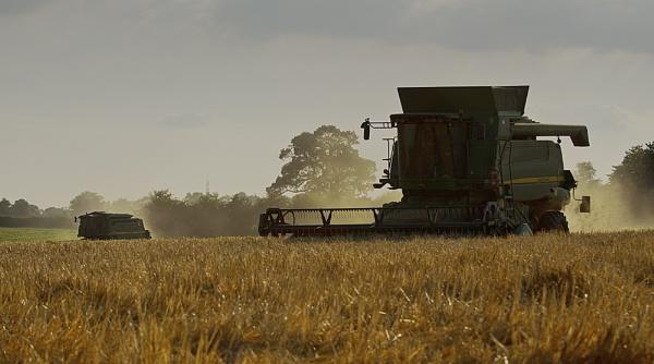 Bringing the Harvest Home by Gavin_Duxbury