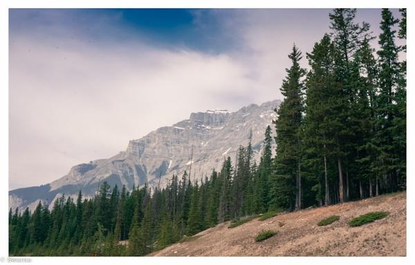 Canadian Rockies - Banff, Alberta by Swarnadip