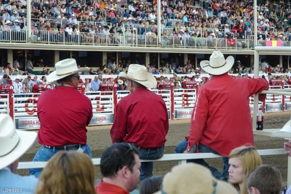 Cowboys - Calgary Stampede, July 2014 by Swarnadip