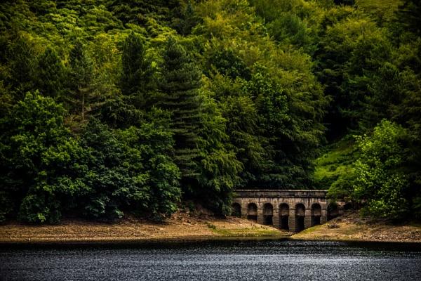 Solitary bridge by Altruizin