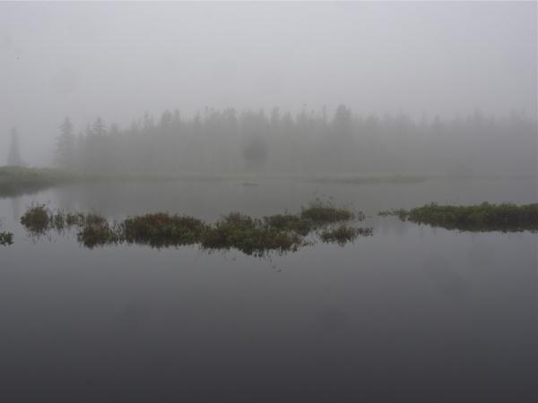 Travels in Maine  #1 by handlerstudio