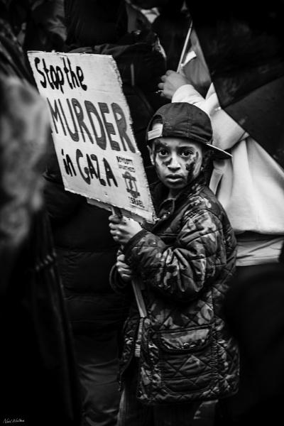 Stop the Murder in Gaza by neilrwalker