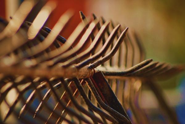 Meet Spiky! by Chinga