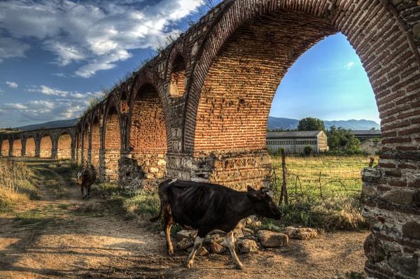 Skopje Aqueduct and cow by darkocv