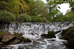 River Darwen Weir