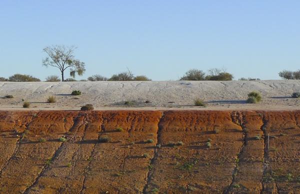 Arid Land by robst