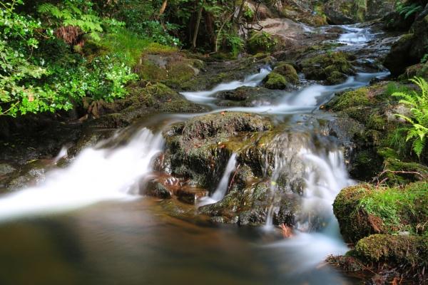 Dolgoch Falls by bailey73