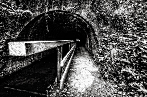 cromford canal by bart26
