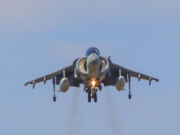 The beloved Harrier by glendalough