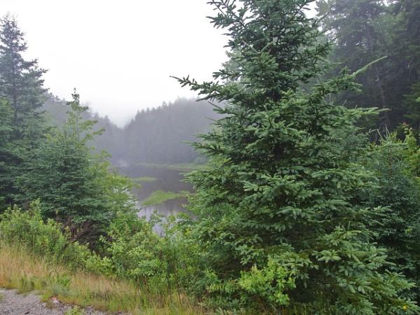 Summer in Maine #18 by handlerstudio