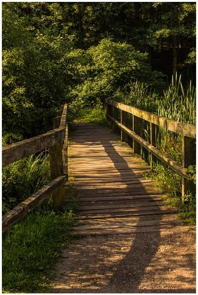 Bridge to nowhere by TrevorPlumbe