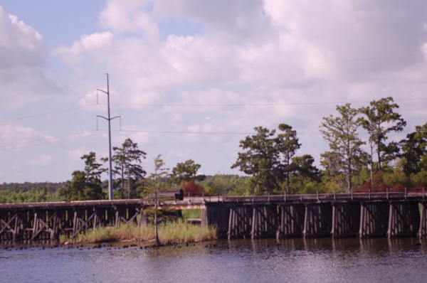 Bayou in Mississippi by Hmccdc