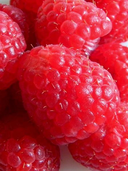 Giant Raspberries