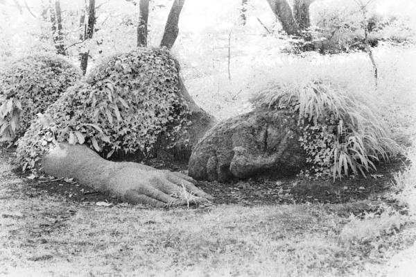 She Sleeps by bugdozer