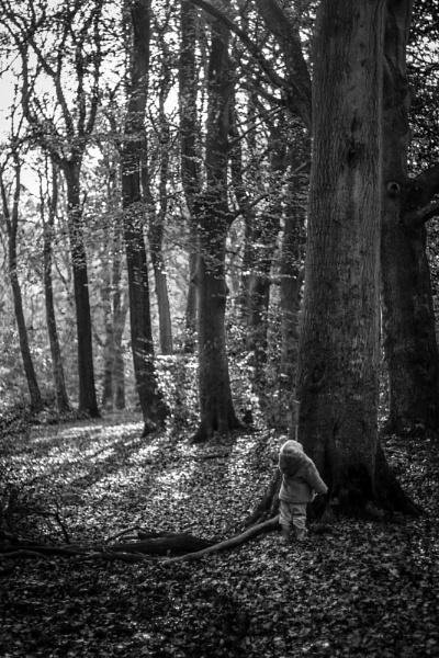 Big Tree, little girl by minter