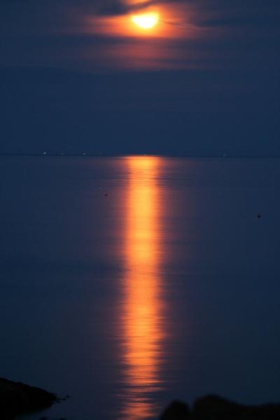 Moontan by ScottishHaggis
