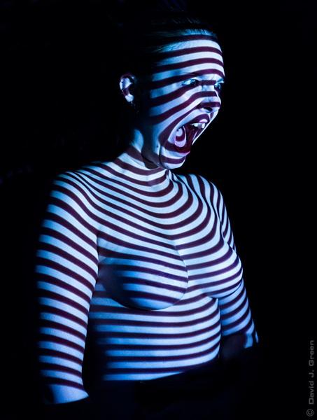 The Scream by david j. green
