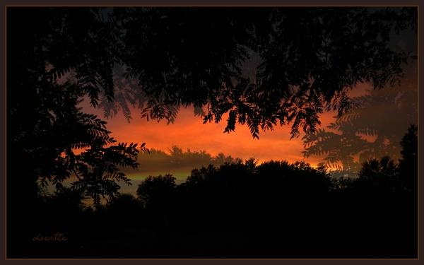 Sunset No. ? by doerthe
