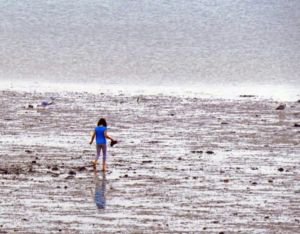 oyster huntress by EssexBienen