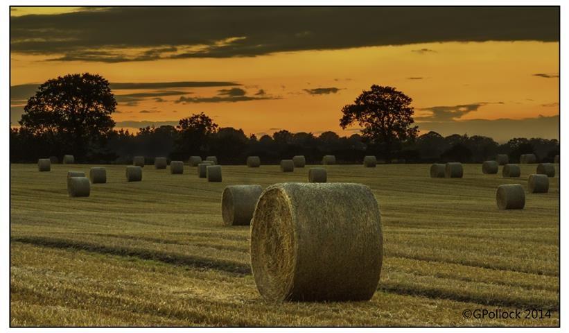 Sunset Bales