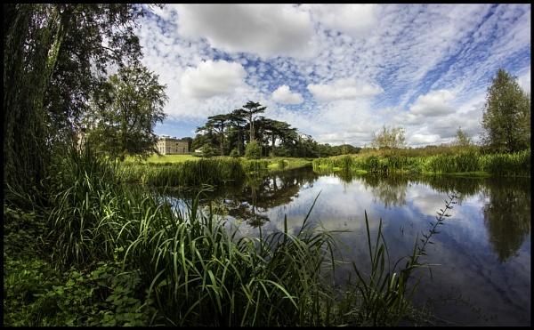 Shropshire Tern by Niknut