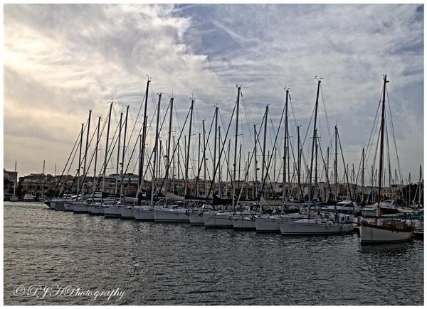 Plain Sailing by daddydingle